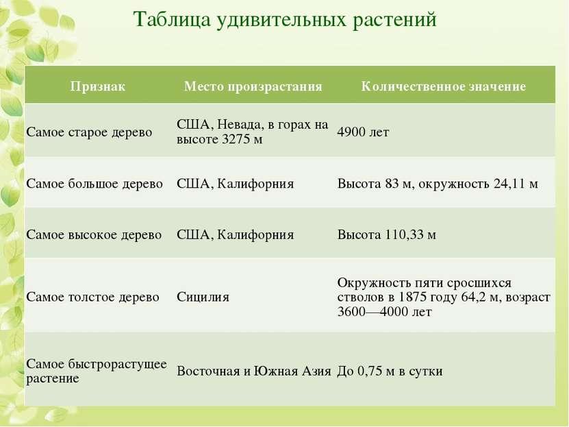 Таблица удивительных растений Признак Место произрастания Количественное знач...