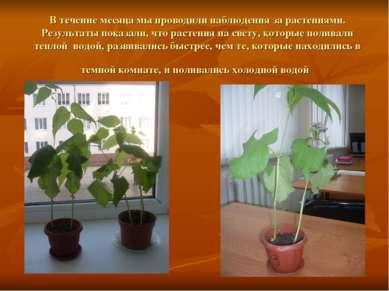 В течение месяца мы проводили наблюдения за растениями. Результаты показали, ...
