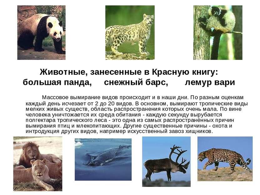 Массовое вымирание видов происходит и в наши дни. По разным оценкам каждый де...