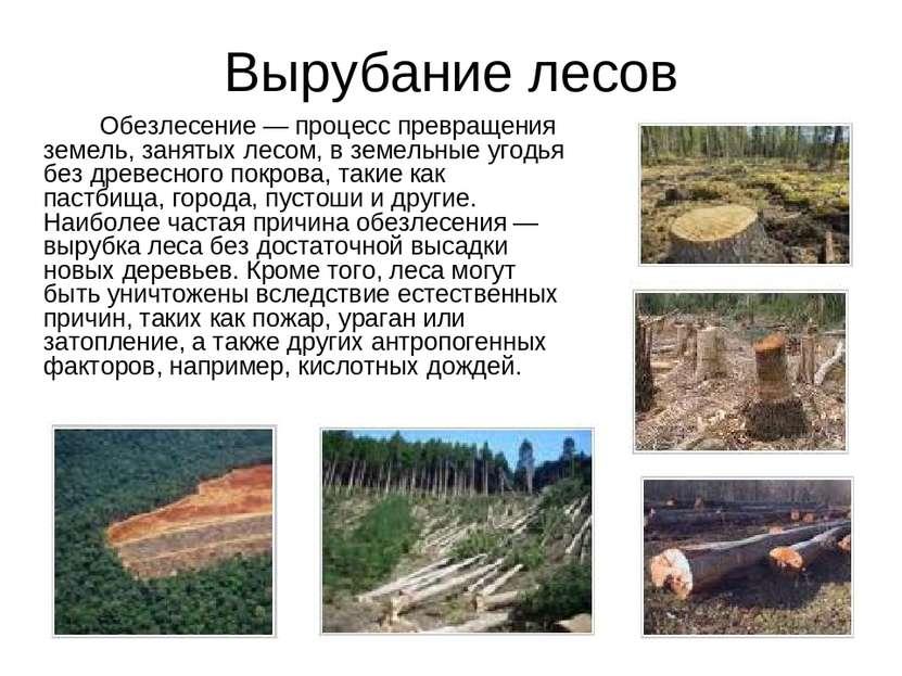 Вырубание лесов Обезлесение — процесс превращения земель, занятых лесом, в зе...