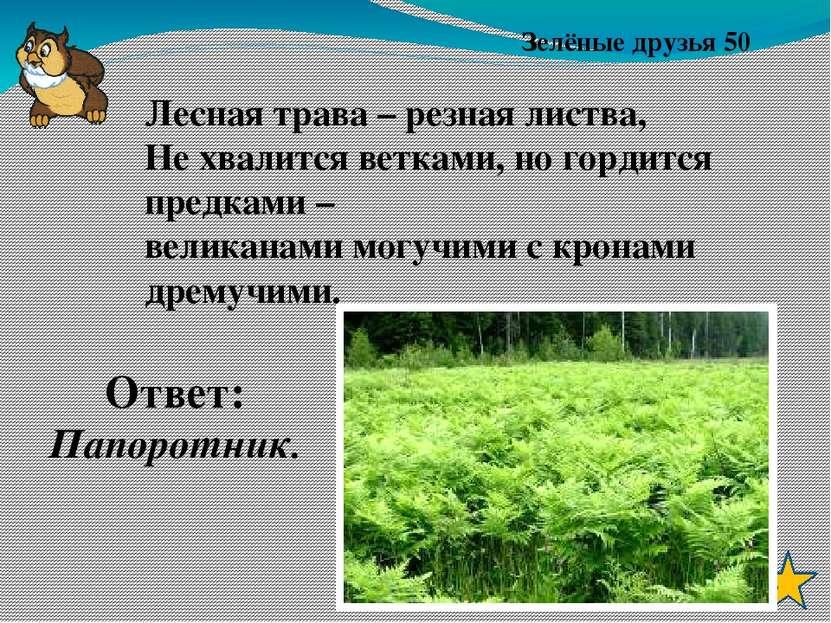 Зверьё моё 40 Ответ: лось Хоть верь, хоть не верь: Пробегал по лесу зверь, Нё...