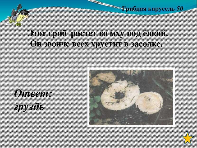 Зелёные друзья 40 О чём идёт речь? Что за дерево стоит – Ветра нет, а лист др...