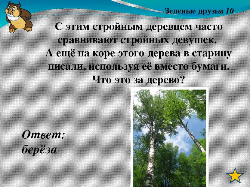 Зелёные друзья 50 Ответ: Папоротник. Лесная трава – резная листва, Не хвалитс...