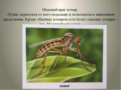 Опасный враг комар. Лучше держаться от него подальше и пользоваться защитными...