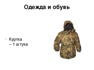 Одежда и обувь Куртка – 1 штука