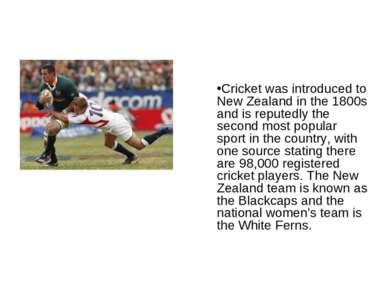 Cricket was introduced to New Zealand in the 1800s and is reputedly the secon...
