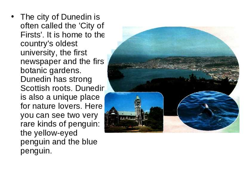 The city of Dunedin is often called the 'City of Firsts'. It is home to the c...