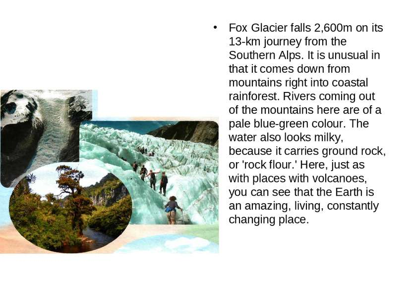 Fox Glacier falls 2,600m on its 13-km journey from the Southern Alps. It is u...