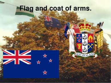 Flag and coat of arms.