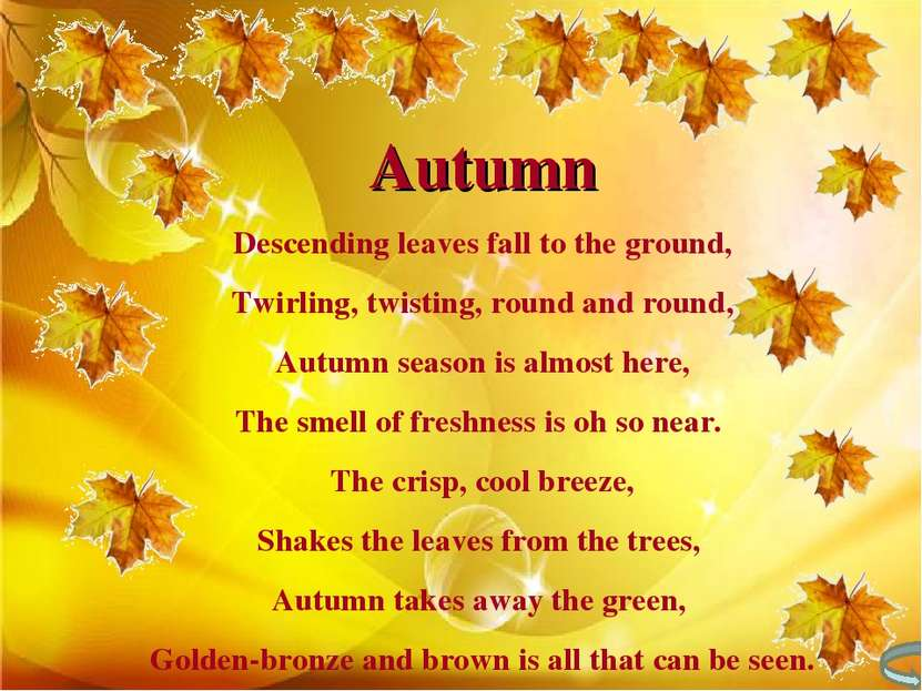 Autumn Descending leaves fall to the ground, Twirling, twisting, round and ro...