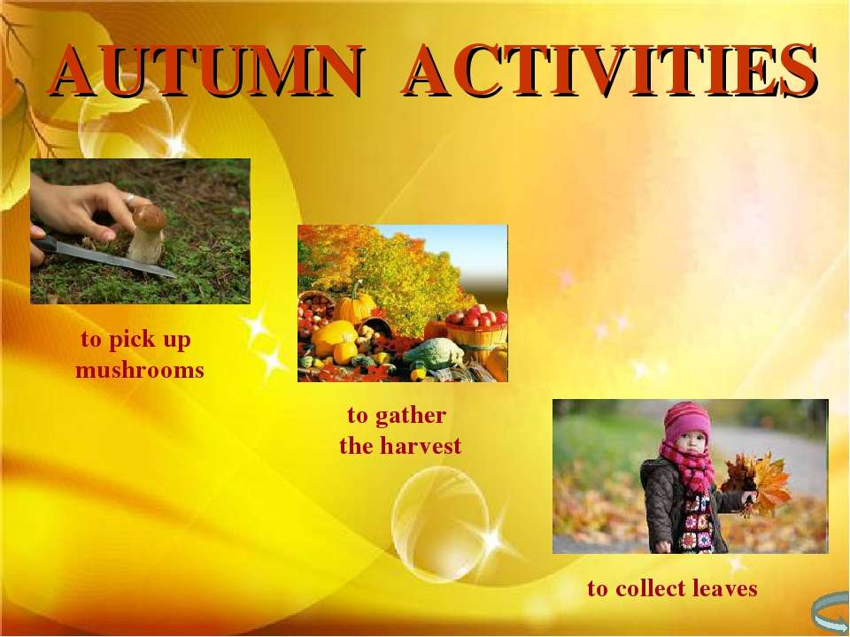 to pick up mushrooms to gather the harvest to collect leaves AUTUMN ACTIVITIES