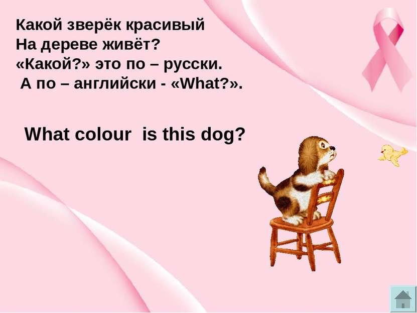 Which – какой, который из How - как ? ? c