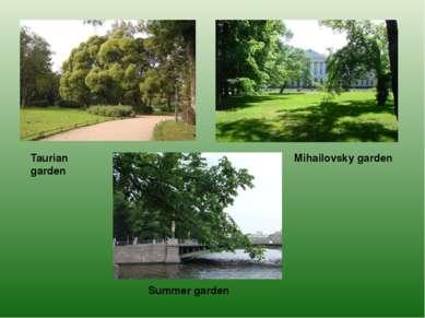 Taurian garden Mihailovsky garden Summer garden