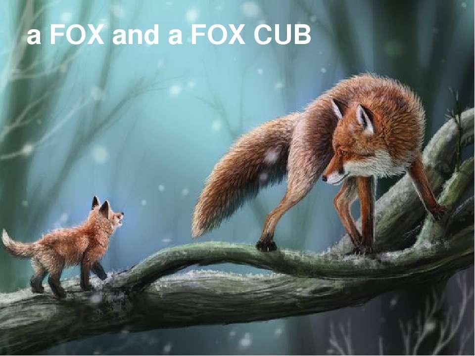 a FOX and a FOX CUB