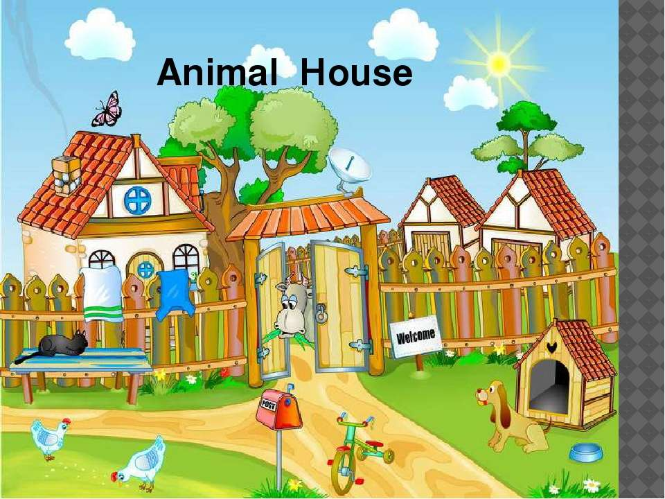 Animal Нouse
