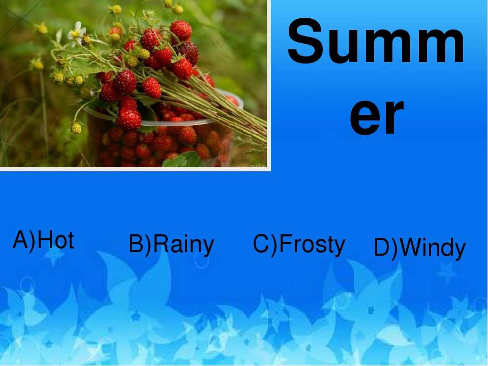 Summer D)Windy C)Frosty B)Rainy A)Hot