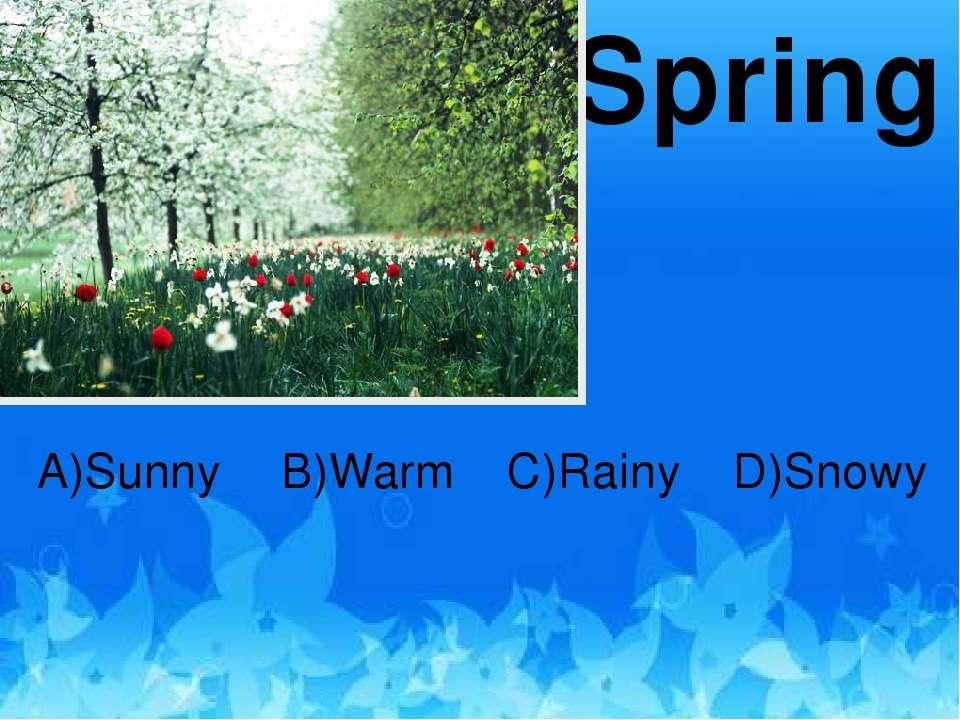 Spring A)Sunny B)Warm D)Snowy C)Rainy