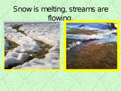 Snow is melting, streams are flowing.
