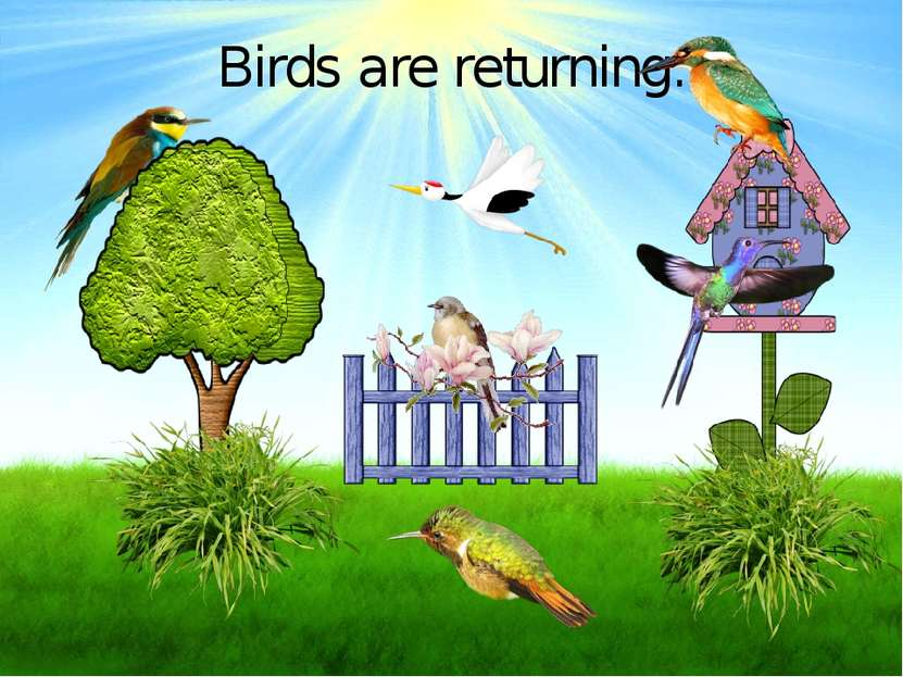 Birds are returning.