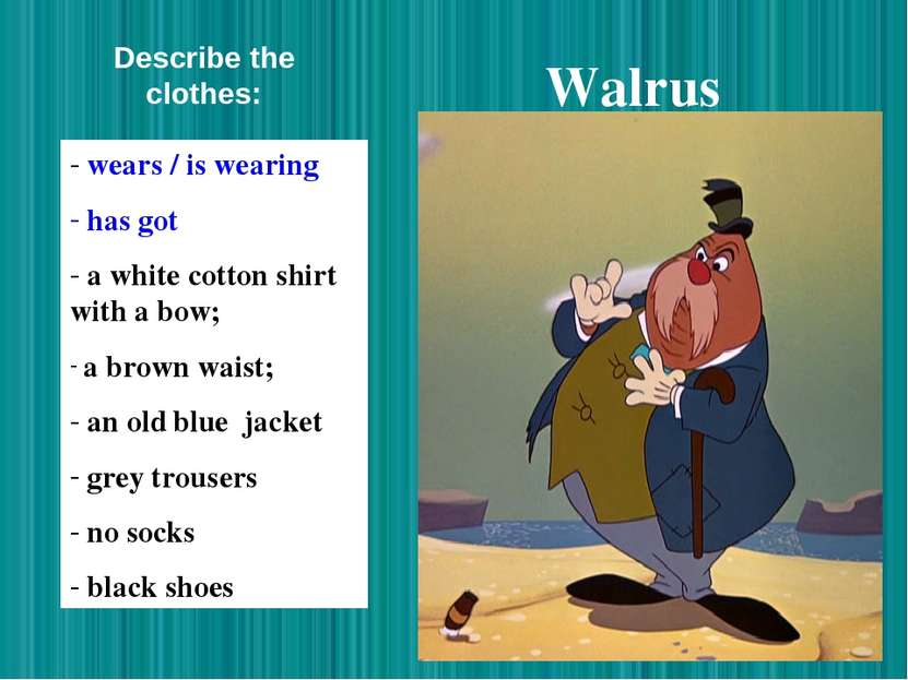 Walrus wears / is wearing has got a white cotton shirt with a bow; a brown wa...