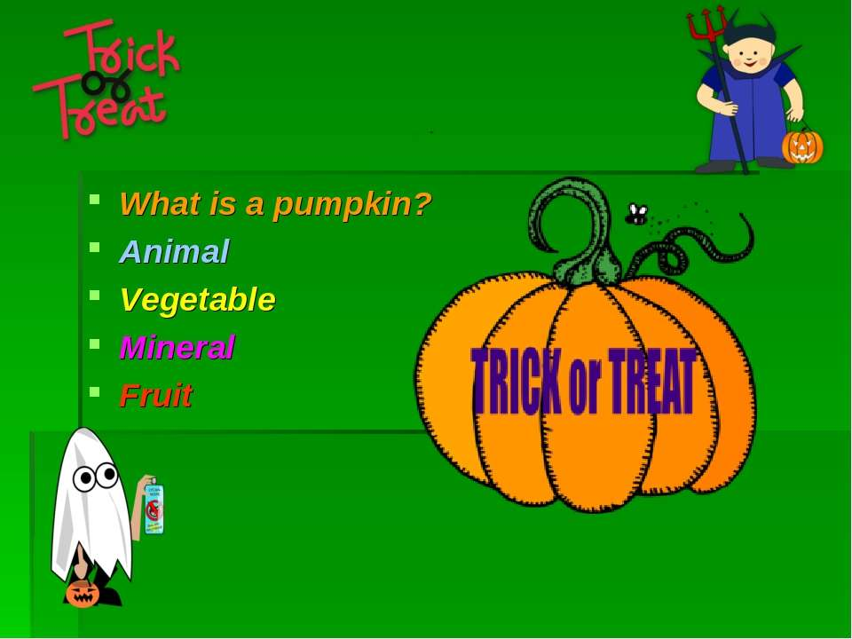 What is a pumpkin? Animal Vegetable Mineral Fruit
