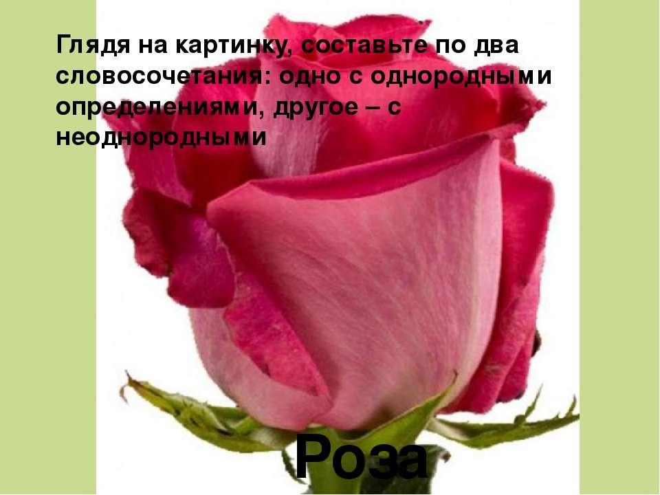 Роза Глядя на картинку, составьте по два словосочетания: одно с однородными о...