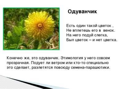 Одуванчик Есть один такой цветок , Не вплетешь его в венок. На него подуй сле...