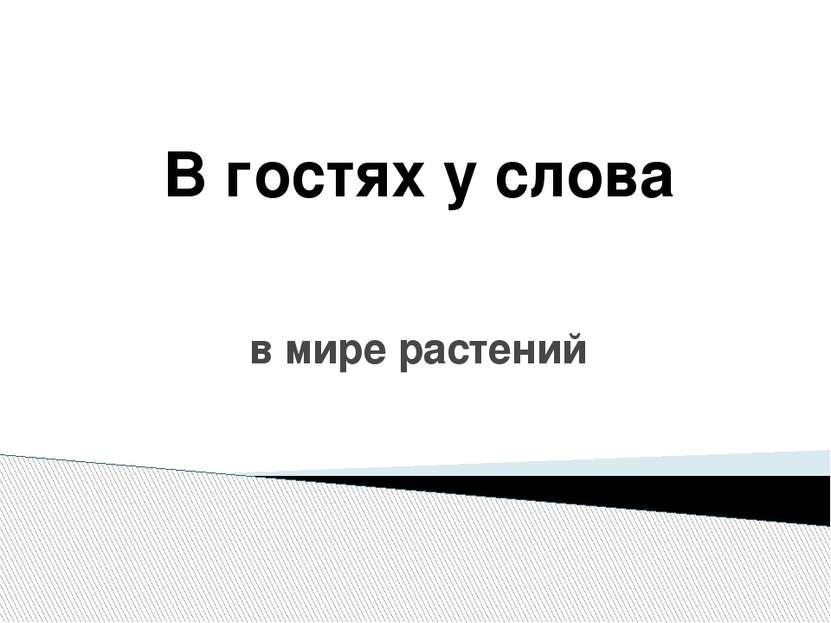 Учитель начальных классов МОУ «Раковская основная общеобразовательная школа Б...