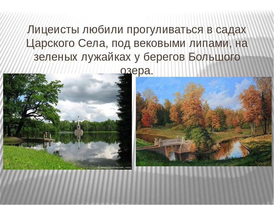 Лицеисты любили прогуливаться в садах Царского Села, под вековыми липами, на ...