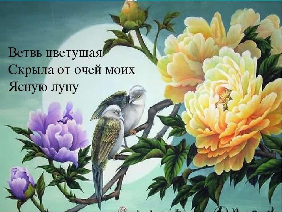Ветвь цветущая Скрыла от очей моих Ясную луну