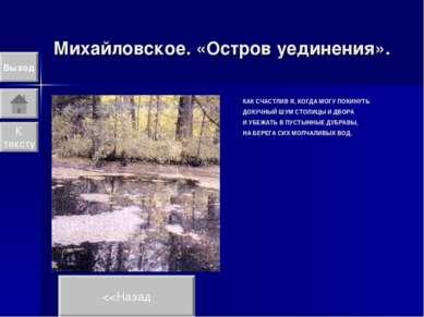 Михайловское. «Остров уединения». Выход