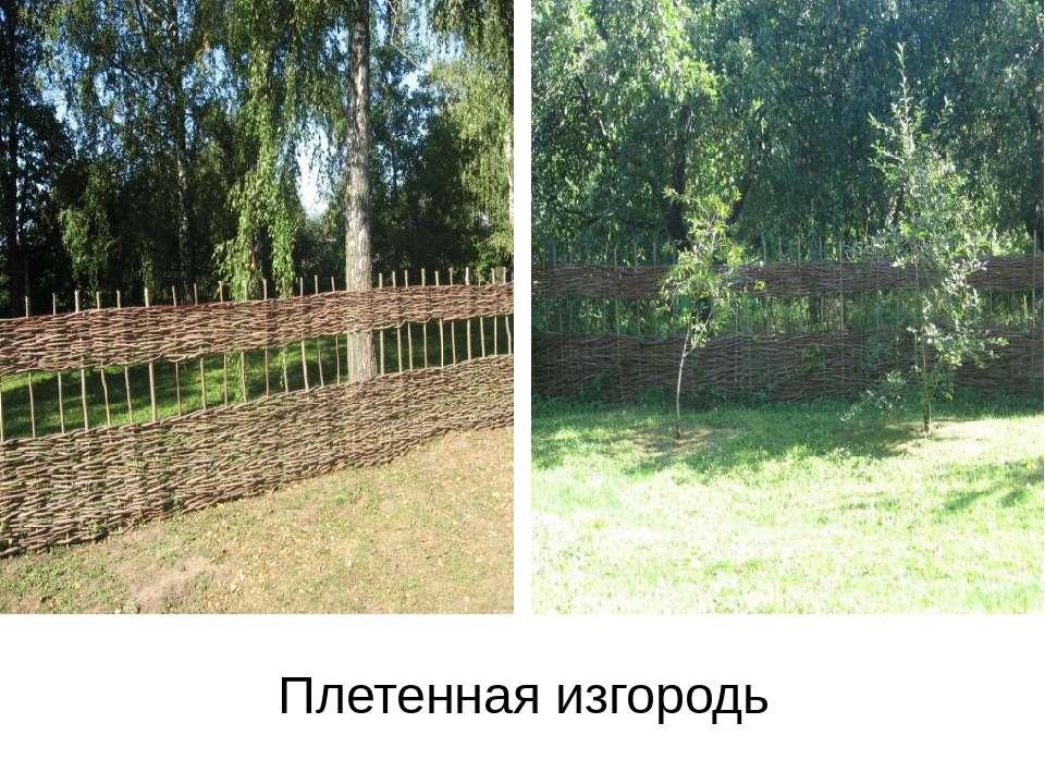 Плетенная изгородь