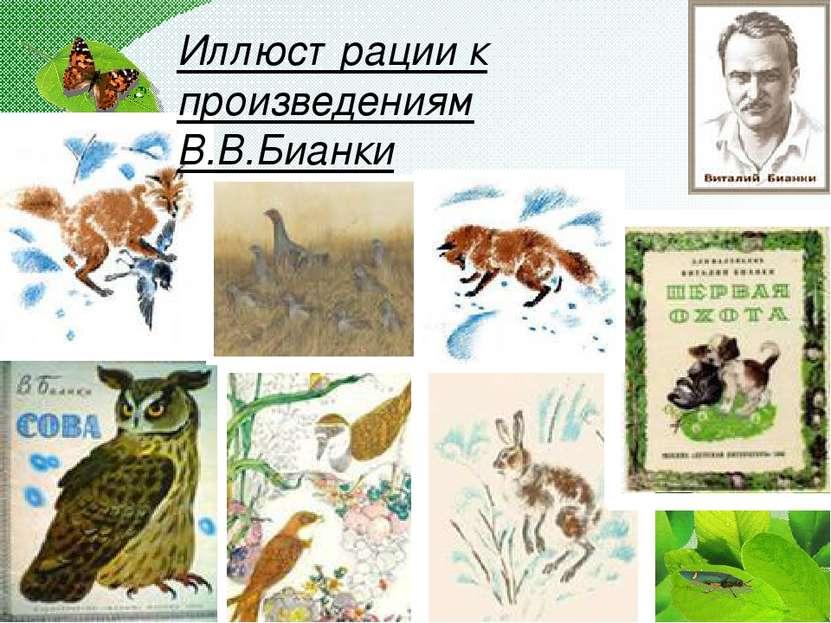 Иллюстрации к произведениям В.В.Бианки