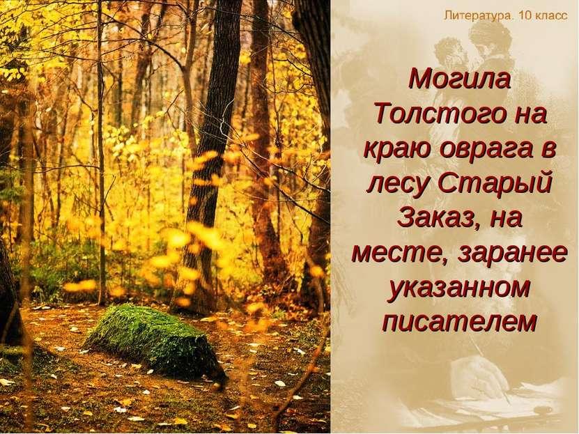 Могила Толстого на краю оврага в лесу Старый Заказ, на месте, заранее указанн...