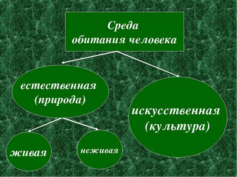 Среда обитания человека естественная (природа) искусственная (культура) живая...