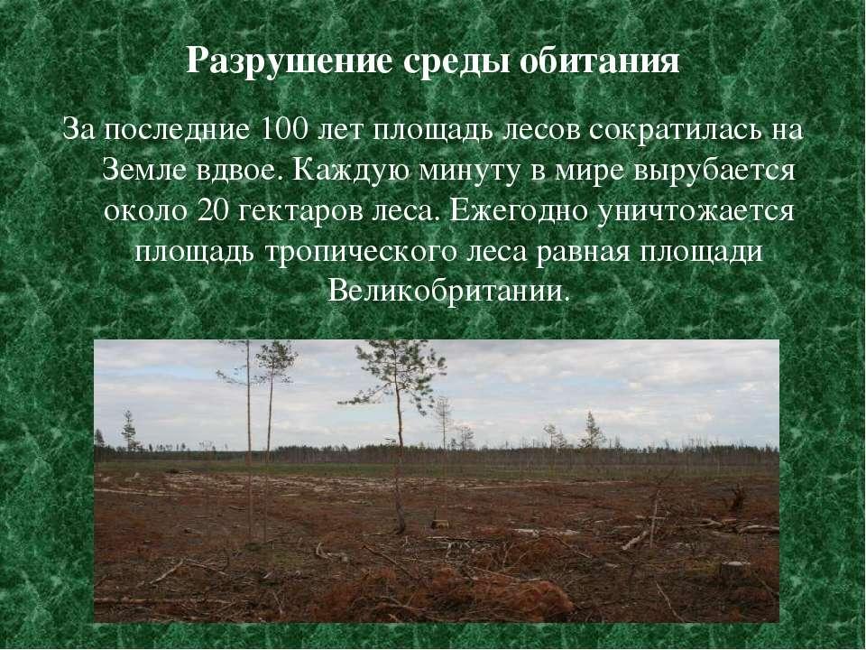 Разрушение среды обитания За последние 100 лет площадь лесов сократилась на З...