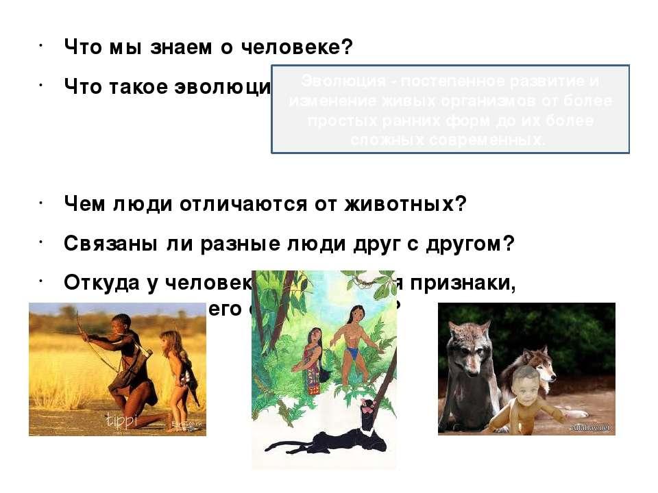 Что мы знаем о человеке? Что такое эволюция? Чем люди отличаются от животных?...