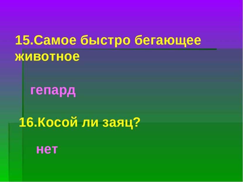15.Самое быстро бегающее животное гепард 16.Косой ли заяц? нет