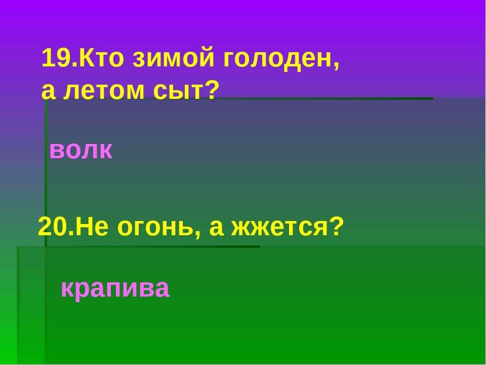 20.Не огонь, а жжется? крапива 19.Кто зимой голоден, а летом сыт? волк