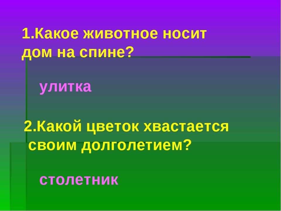 1.Какое животное носит дом на спине? улитка 2.Какой цветок хвастается своим д...