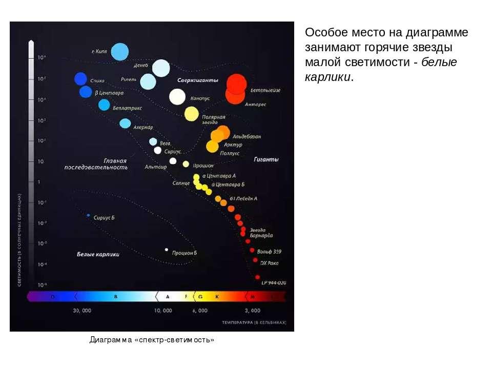 Особое место на диаграмме занимают горячие звезды малой светимости - белые ка...