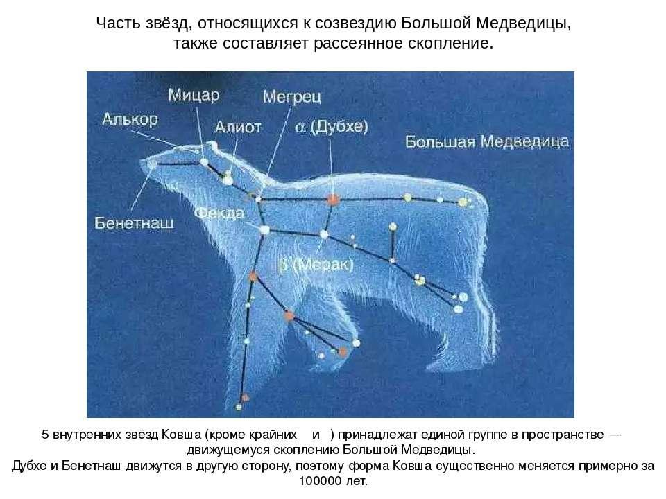 Часть звёзд, относящихся к созвездию Большой Медведицы, также составляет расс...