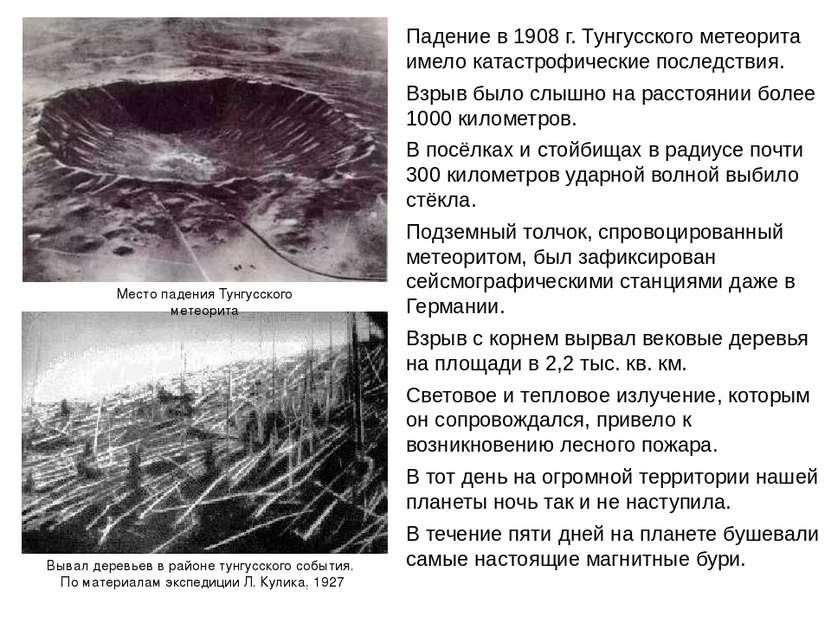 Вывал деревьев в районе тунгусского события. По материалам экспедиции Л. Кули...