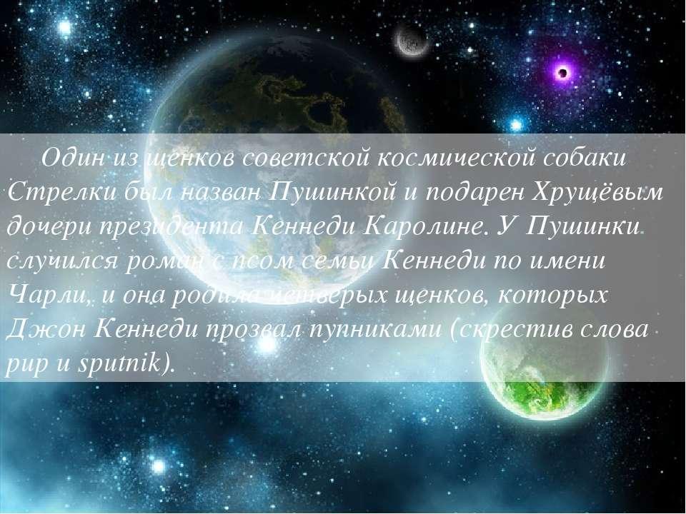 Один из щенков советской космической собаки Стрелки был назван Пушинкой и под...