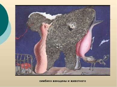 симбиоз женщины и животного