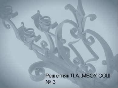 Решетняк Л.А.,МБОУ СОШ № 3 г. Костомукша Республика Карелия