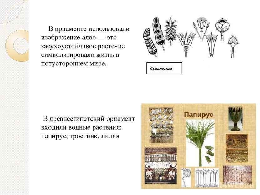 В орнаменте использовали изображение алоэ — это засухоустойчивое растение сим...