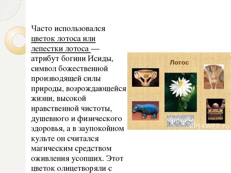 Часто использовался цветок лотоса или лепестки лотоса — атрибут богини Исиды,...