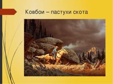 Ковбои – пастухи скота
