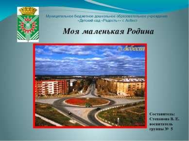 Муниципальное бюджетное дошкольное образовательное учреждение «Детский сад «Р...